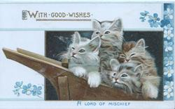 WITH GOOD WISHES in gilt above 4 kittens in wheelbarrow above A LOAD OF MISCHIEF in blue, forget-me-not-design