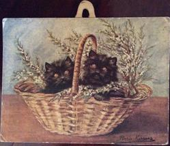 two black kittens in basket of heather
