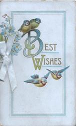 BEST WISHES(B &W illuminated) , 4 blue-tits bluebirds of happiness, forget-me-nots left