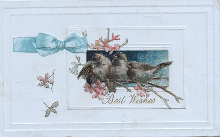 BEST WISHES in gilt below 3 bluebirds of happiness, pink blossom around, printed blue bow left