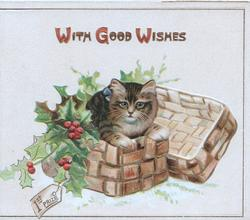 WITH GOOD WISHES in gilt above kitten in basket of holly, labelled 1ST. PRIZE