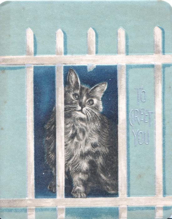 TO GREET YOU in gilt, cat sits behind broken fence looking up