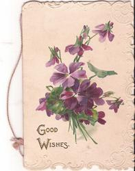 GOOD WISHES in gilt below bunch of violets