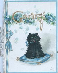 GREETING black cat sits on blue cushion under forget-me-nots, printed blue ribbon left