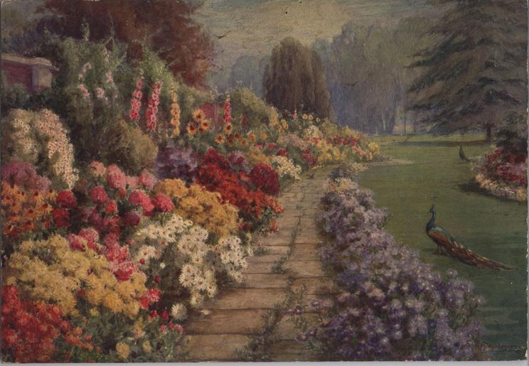 MY DREAM GARDEN (title on reverse)