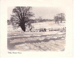 WHEN WINTER COMES farm field covered in snow, large tree left, glitter