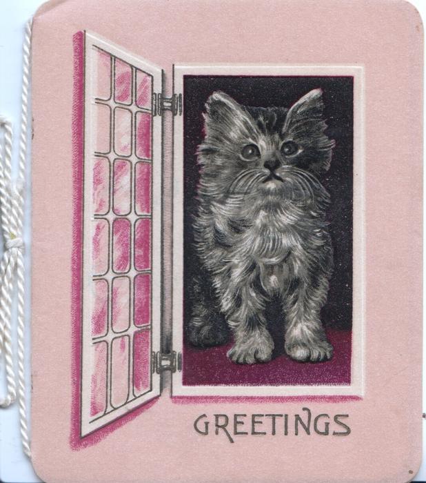 GREETINGS in gilt below kitten standing in open window