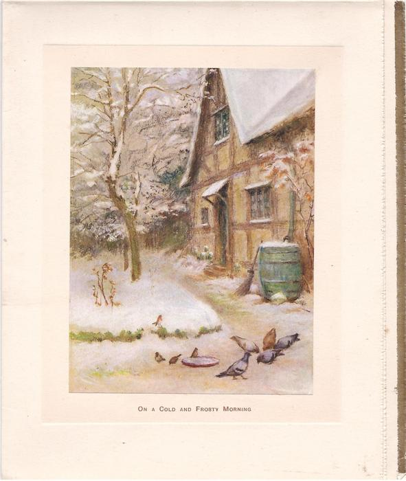 ON A COLD FROSTY MORNING birds eating on path, cottage right, sparse trees left, snow