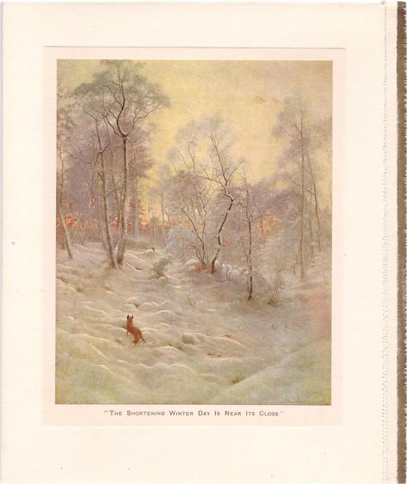 THE SHORTENING WINTER DAY IS NEAR IT'S CLOSE fox faces away in snowy woodland setting