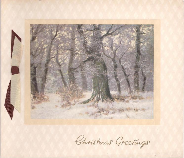 CHRISTMAS GREETINGS, snowy woodland, brown & cream ribbon left