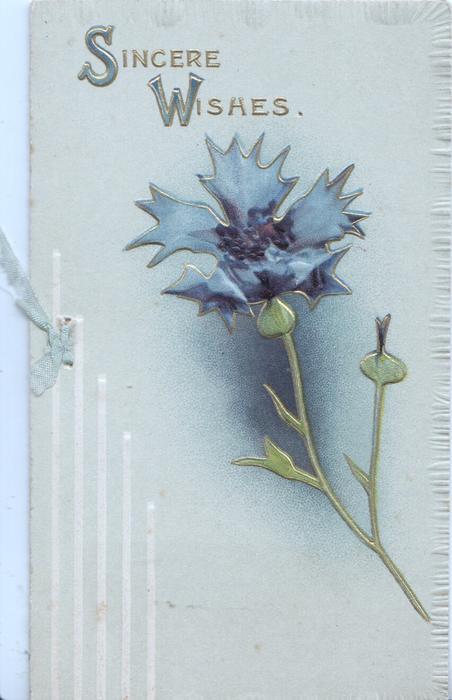 SINCERE WISHES in gilt above single blue cornflower