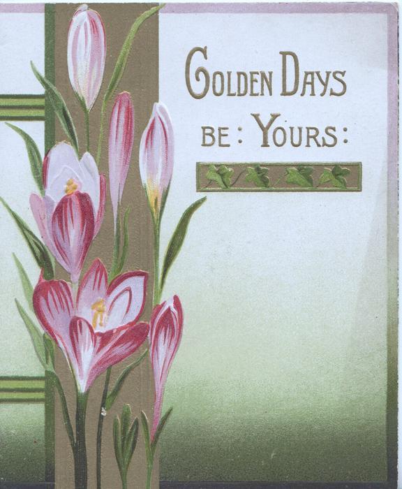 GOLDEN DAYS BE YOURS in gilt above right, purple crocus over gilt design left