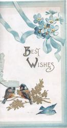 BEST WISHES in gilt below blue ribbon & forget-me-nots , 3 birds of happiness below 3 blue margins