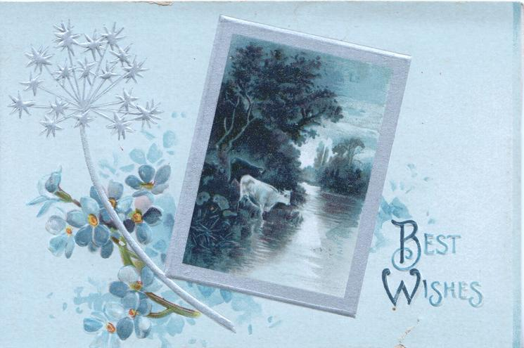 BEST WISHES in blue lower right, silver bordered rural inset of cow in river, forget-me-nots & stytlised silver thistle left