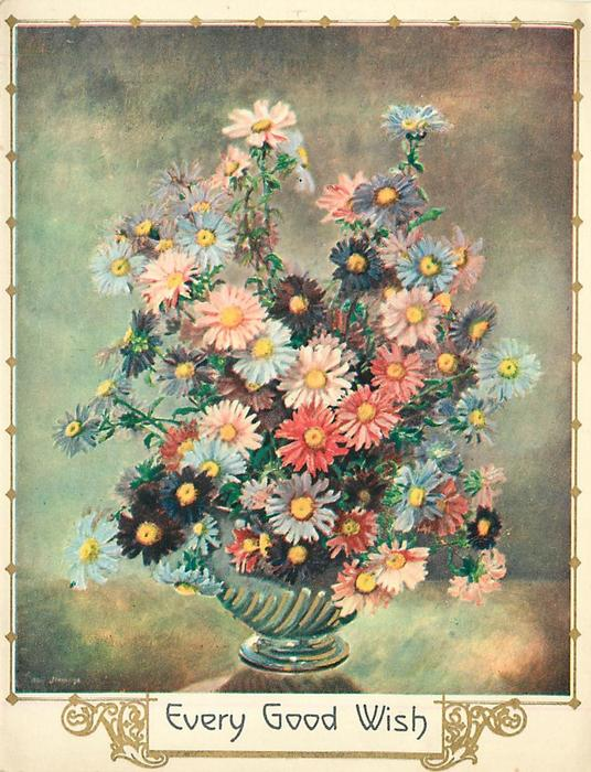EVERY GOOD WISH many colours of asters in vase