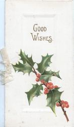GOOD WISHES above berried holly