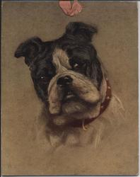 A TRUSTY FRIEND (title on reverse) bulldog
