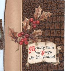 MEMORY TURNS HER PAGES(M & P illuminated) on whte plaque below berried holly, brown faux leasther backgroundd