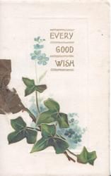 EVERY GOOD WISH in gilt above ivy in front of blue forget-me-nots