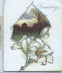 GREETINGS in silver, silver framed evening rural inset above glittered lily