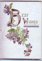 BEST WISHES(B & W illuminated) purple & white lilac