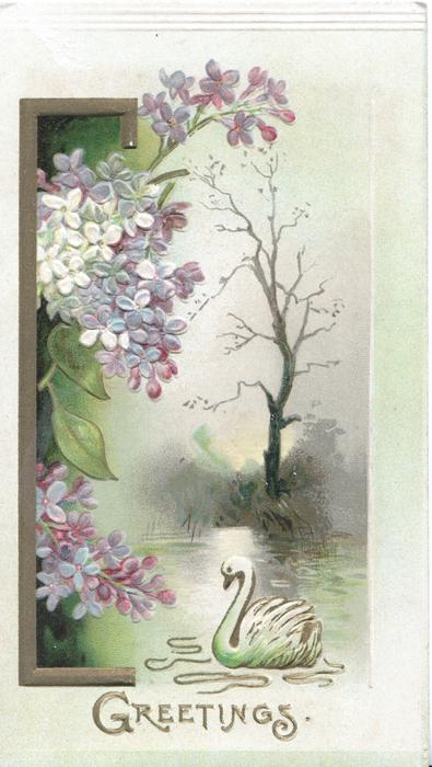 GREETINGS in gilt below purple & white lilac left of inset watery rural scene, swan