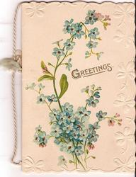 GREETINGS in gilt, in center of bunch of forget-me-nots