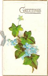 GREETINGS in gilt, ivy leaves surrounded by forget-me-nots belows