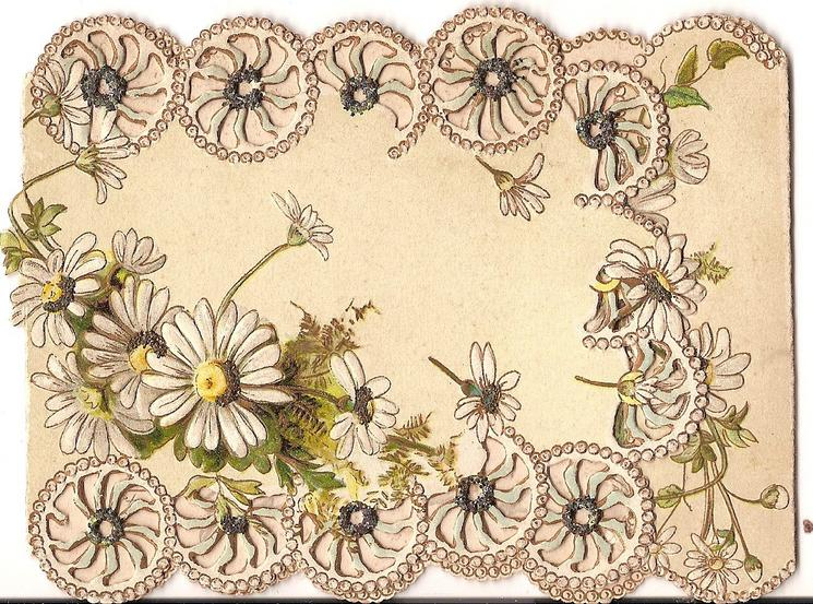 no title on front, various stylised daisies