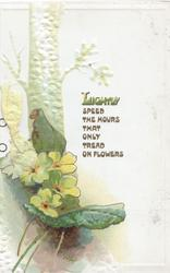LIGHTLY SPEED THE HOURS THAT ONLY TREAD ON FLOWERS above 4 yellow primroses & tree behind