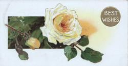 BEST WISHES in whitre right, yellow rose & 2 buds left