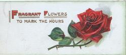 FRAGRANT FLOWERS (illuminated) TO MARK THE HOURS red rose