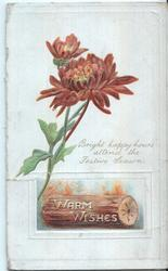 WARM WISHES in gilt on log, chrysanthemums above