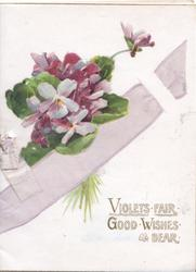 VIOLETS FAIR GOOD WISHES BEAR, bunch of violets held by printed purple ribbon