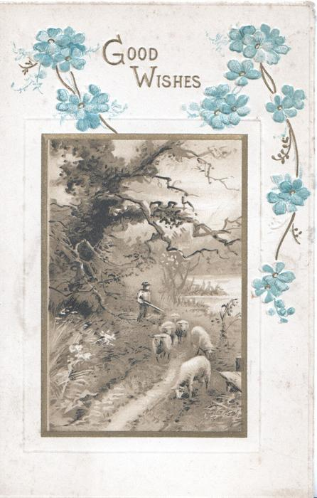 GOOD WISHES in gilt above gilt bordered rural inset of shepherd & 6 sheep  forget-me-nots above