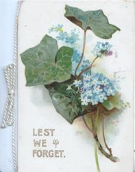 LEST WE FORGET below ivy & forget-me-nots