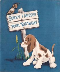 SORRY I MISSED YOUR BIRTHDAY on sign with bird atop, dog faces left front, blue background