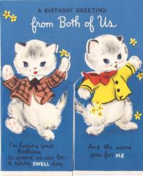 A BIRTHDAY GREETING FROM BOTH OF US  die-cut, dressed white cats on front flaps, blue background