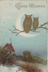 GOOD WISHES top above 2 perched gilt owls, moonlit rural scene, cottage & water below left, blue background