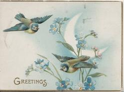 GREETINGS in gilt below 2 bluebirds of happiness among forget-me-nots below sliver of moon