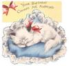 YOUR BIRTHDAY CAUGHT ME NAPPING white cat curled up in basket
