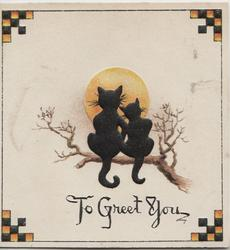 TO GREET YOU 2 black cats sit on branch looking at rising sun