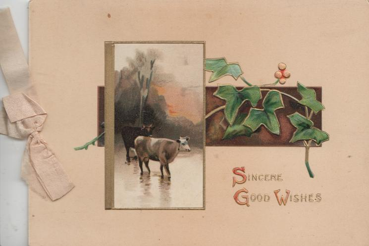 SINCERE GOOD WISHES in gilt below inset of hills & lochs, behind 2 cows in water moving right, holly right