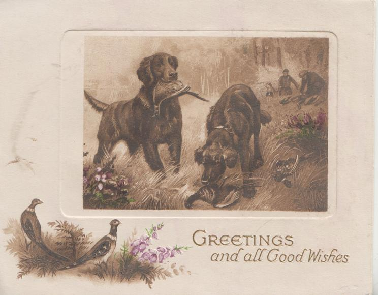 GREETINGS AND ALL GOOD WISHES below inset of 2 retrievers  with pheasants, pheasants & heather below left