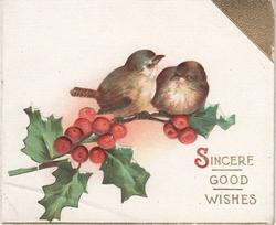 SINCERE GOOD WISHES (S illuminated) two birds sit on branch of holly