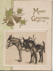 MANY GREETINGS in gilt above 2 saddled donkeys facing left, gilt bells & holly top left