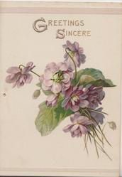 GREETINGS SINCERE in gilt above bunch of purple violets
