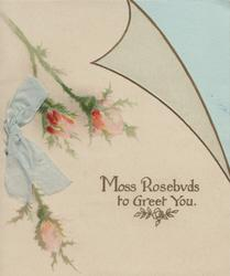MOSS ROSEBUDS TO GREET YOU. 3 moss roses left on sheet cut as page of book