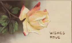 WISHES TRUE in gilt below right, yellow/orange rose & dark background left