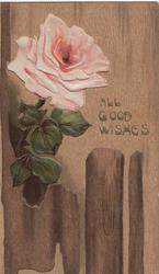 ALL GOOD WISHES in gilt right of pink rose above fence, faux wood background